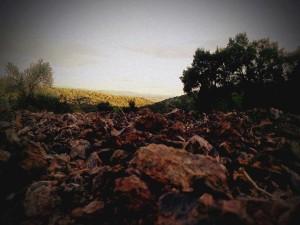 Fuorimondo - La Terra
